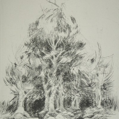 "Evan Lindquist ""Demon Woods"" 1964 engraving"