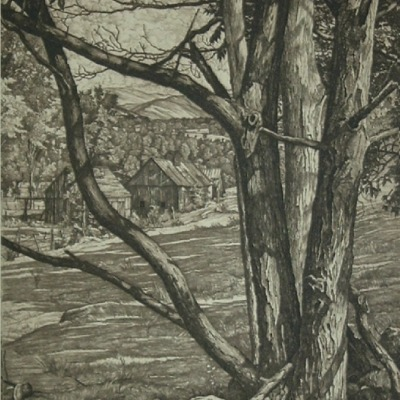 "Luigi Lucioni ""Tree Rhythm"" 1953 etching"