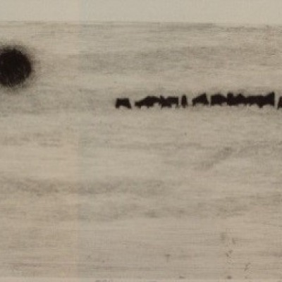 Black Pasture by Danielle Dillemann, 1965 Etching