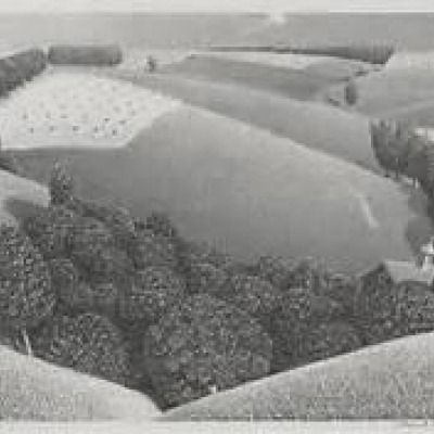 July Fifteenth by Grant Wood, Lithograph 1938